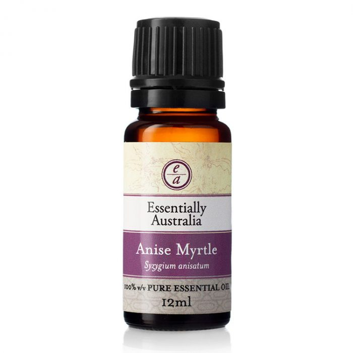 Anise Myrtle Essential Oil, Aniseed Myrtle, Australian Aniseed Myrtle Essential oil, anise myrtle essential oil uses