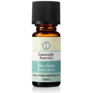 Eucalyptus Blue Gum Essential Oil, blue gum essential oil, blue gum oil, pure eucalyptus oil, blue gum food grade oil