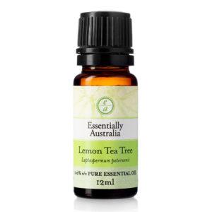 Lemon Tea Tree Essential Oil, lemon scented tea tree, lemon tea tree, lemon tea tree oil