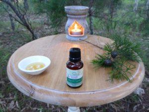 Emerald Cypress CO2 Essential Oil