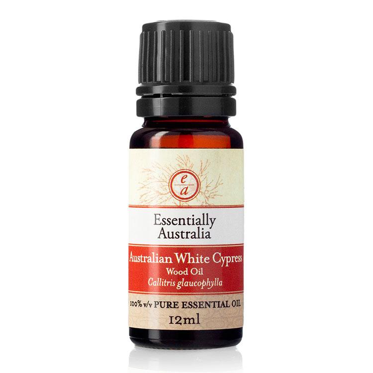 Australian White Cypress Essential Oil (Wood oil)