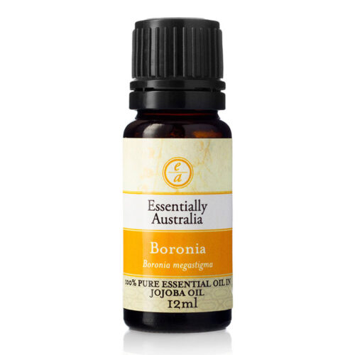 boronia essential oil, boronia oil australia, boronia perfume, boronia flower, Boronia 3% Absolute in Jojoba Oil