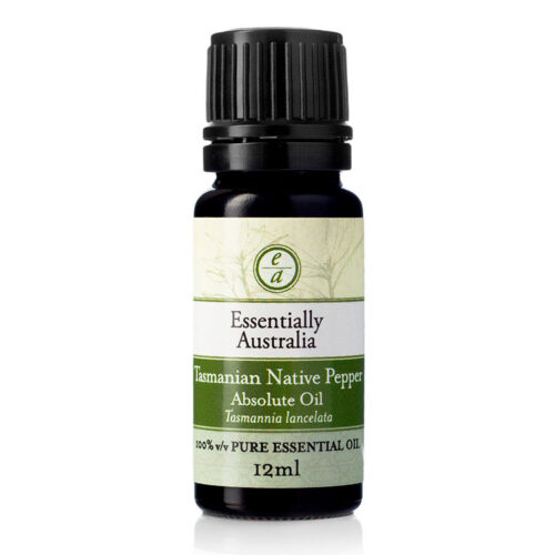 Tasmanian Native Pepper Absolute oil | Essentially Australia, Tasmanian pepper essential oil, native Tasmanian pepper oil, Tasmanian mountain pepper oil, native Tasmanian pepper food grade oil