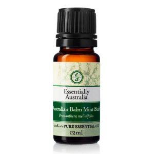 australian balm mint bush essential oil, native mint bush, mint bush