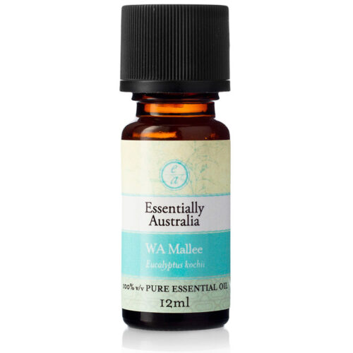 Eucalyptus WA Mallee Essential Oil, WA mallee essential oil, mallee essential oil, eucalyptus mallee oil