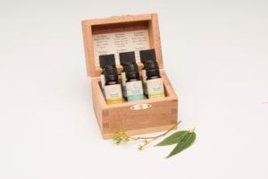 Eucalyptus Collection Essential Oil Box Set