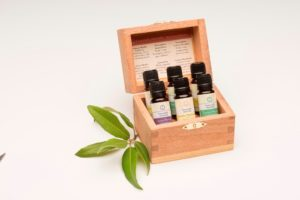 Forests Collection Gift Box Set